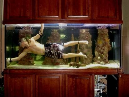 Acquario grande acquari for Pesci per acquario piccolo