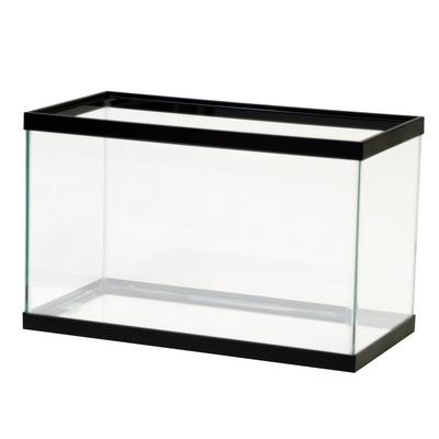 Acquario in vetro acquari for Acquario tartarughe vendita online