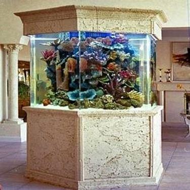 Acquario vendita acquari come fare per comprare un for Acquario esterno per tartarughe