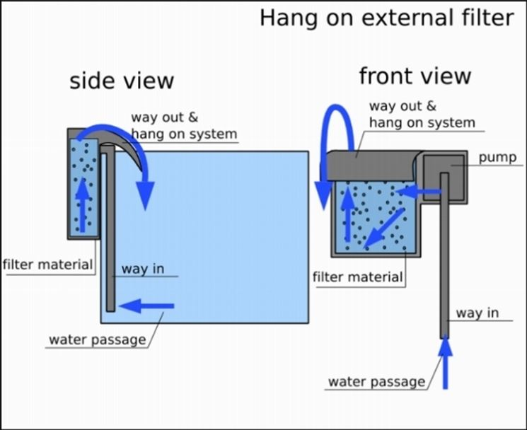 Filtro esterno acquario accessori per acquario for Acquario con filtro esterno