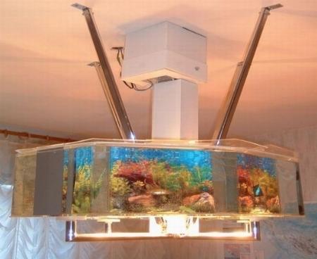 Plafoniere Per Acquari : Plafoniera per acquario accessori caratteristiche