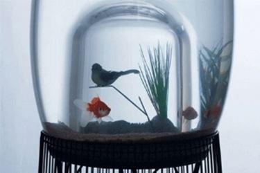 Vasche Acquari