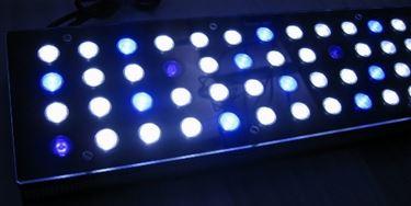 Illuminazione acquario