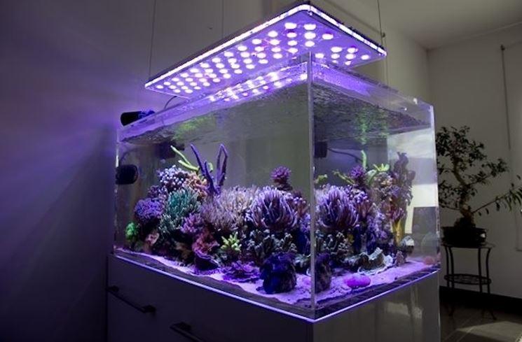 Plafoniere Per Marino : Led acquario marino luci a per
