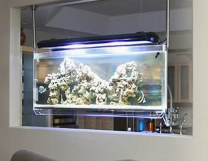 Plafoniera led acquario led acquario for Plafoniera led acquario