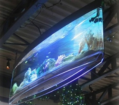 Plafoniera led acquario led acquario for Luci led per acquario
