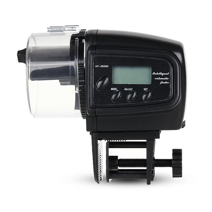 Mangiatoia automatica digitale