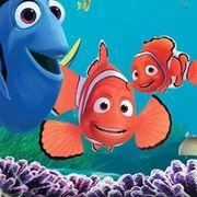 pesci nemo