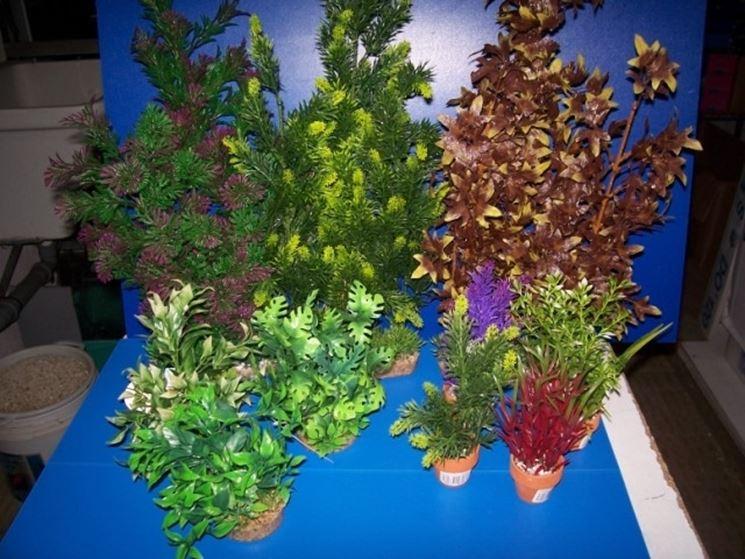 Collezione di piante finte