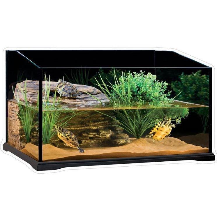 Acquario per tartarughe di medie dimensioni