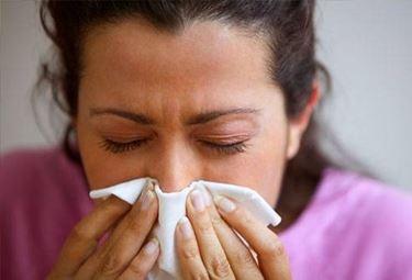 allergia cane