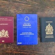 passaporto cani